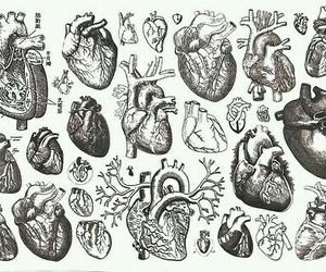 heart, hearts, and art image