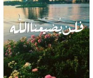 فلن يضيعنا الله image