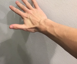 arm, guy, and veins image