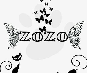 z, zozo, and zoz image