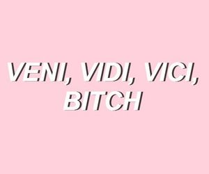 pink, quotes, and bitch image