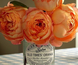 flowers, orange, and peonies image