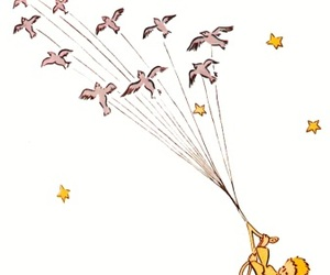 the little prince, book, and bird image
