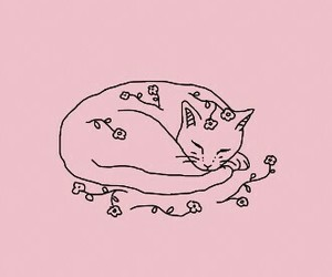 cat, pink, and flowers image