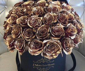 authentic, roses, and beautiful image