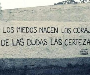 accion poetica, fear, and frases image
