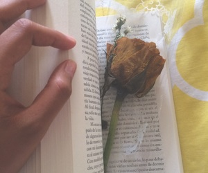 flores, libros, and frases image