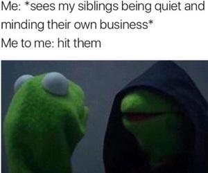 funny, siblings, and kermit image