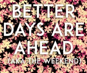 flowers, weekend, and quote image