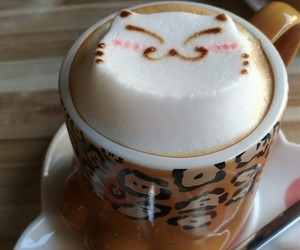coffee, latte, and cat image