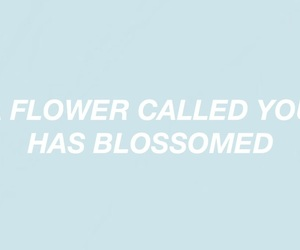 baby blue, header, and pastel image