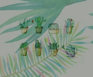cactus, green, and plant image