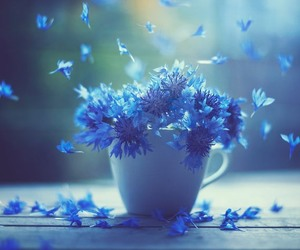 flowers, cute, and foto image