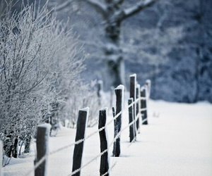 aesthetic, snow, and winter tale image