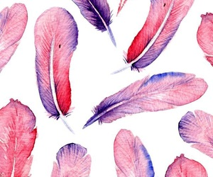 feather, background, and pink image