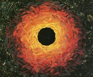 art, leaves, and andy goldsworthy image
