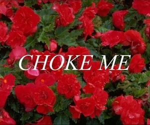 choke, flowers, and kink image