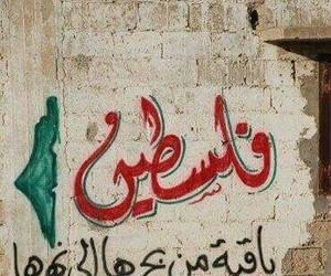 arabic, palestine, and عربي image