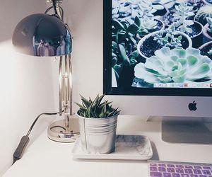 apple, decor, and goals image
