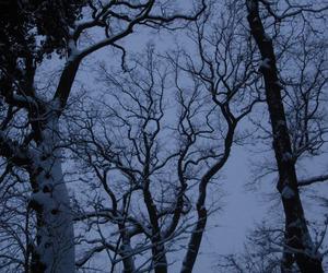 tree, grunge, and snow image