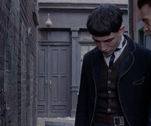 2016, credence, and harry potter image