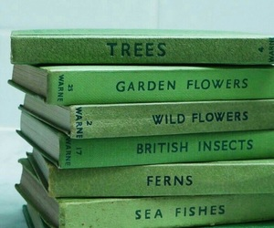 book, green, and aesthetic image
