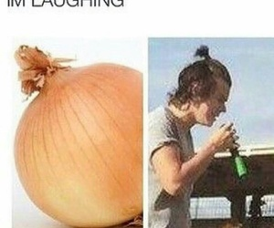 funny, messy bun, and onion image