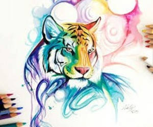 colorful and 🐯 image