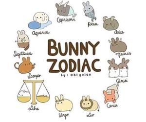 bunny and zodiac image