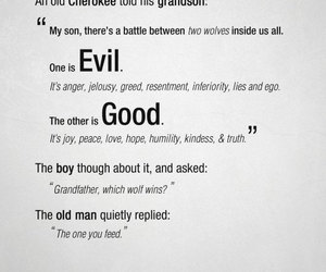 quote, good, and evil image