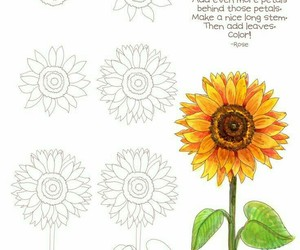sunflower and drawing image