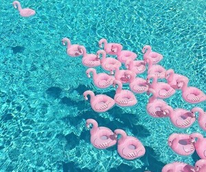 summer, pink, and pool image