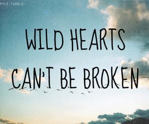 wild, broken, and hearts image