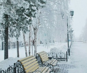 cold, scenery, and snow image