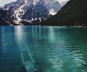 amazing, nature, and tumblr image