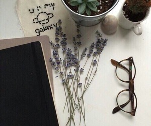 grunge, tumblr, and flowers image