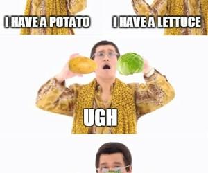 lettuce, potato, and sean image