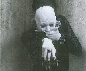 anna varney, cantodea, and ╬ image