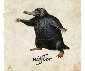 niffler, newt scamander, and harry potter image