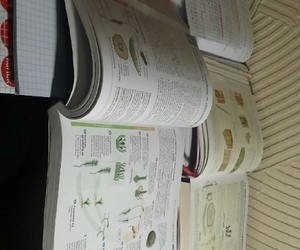 biology, hard, and learn image