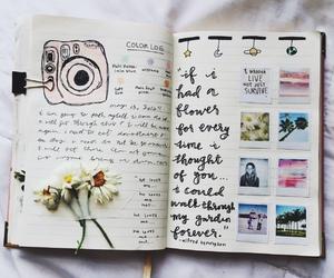 creativity, dream project, and wisdom image
