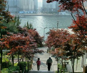 korea, asia, and busan image