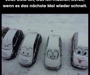 snow, car, and funny image