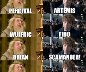 funny, harry potter, and lmao image