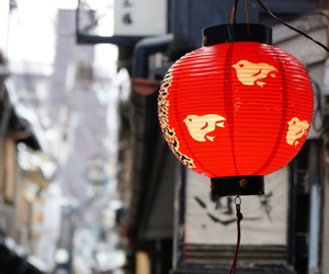 asia, japan, and lamp image