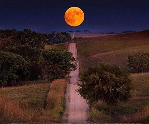 moon, nature, and adventure image
