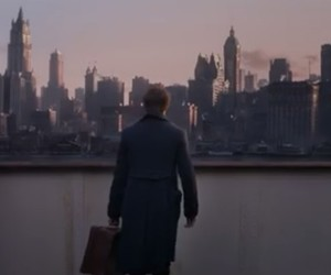 new york city, fantastic beasts, and newt scamander image