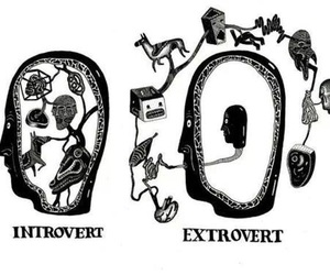 introvert, extrovert, and art image