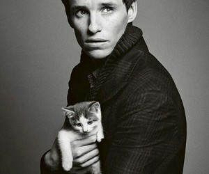 eddie redmayne, cat, and actor image