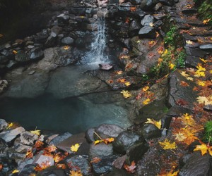 autumn and water image